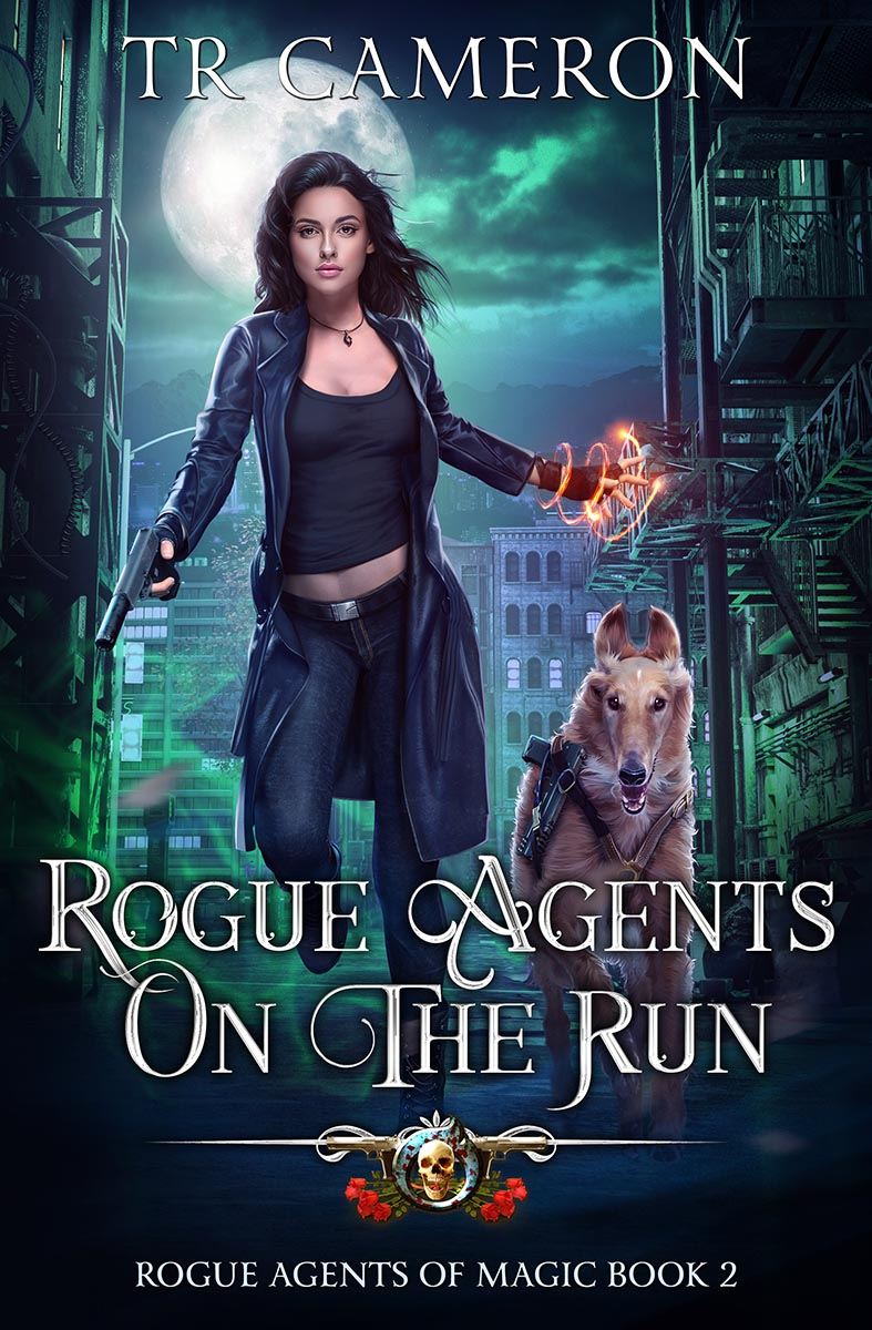 Rogue Agents of Magic Book 2: Rogue Agents on the Run